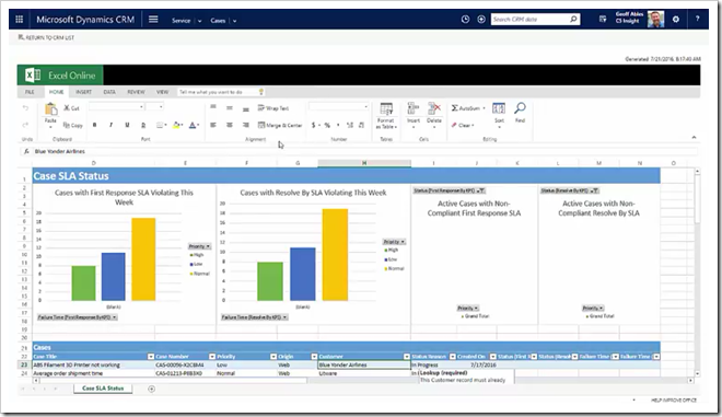 Screenshot - Excel Dashboard for Microsoft Dynamics CRM Case